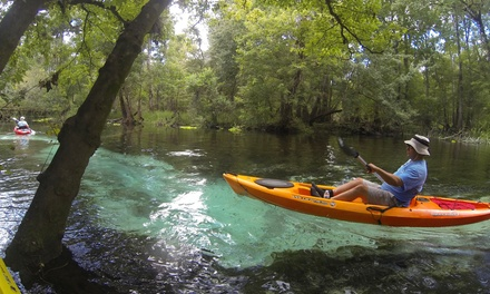 Half-Day Canoe Trip on the Santa Fe River for Two, Four, or Six from Rum 138 (Up to 51% Off)