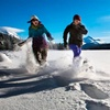 Up to 46% Off Snowshoe Fun Run