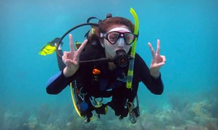 Squalo Divers - North Miami Beach: $199 for a PADI Open-Water Scuba-Certification Course with Dives from Squalo Divers ($500 Value)