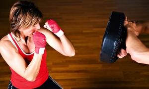 Shaku Family Martial Arts: Women's Kick-Boxing Classes at Shaku Family Martial Arts (Up to 87% Off). Three Options Available.