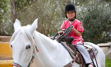 1 Pony Tales Riding Club Group Horseback-Riding Session (a $40 value) - Copperbeech Farm in Goodrich