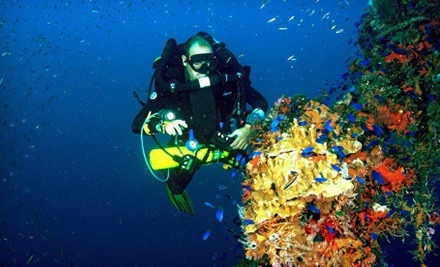 Open-Water Referral or Certification Packages at Northeast Scuba (Up to 53% Off). Three Options Available.
