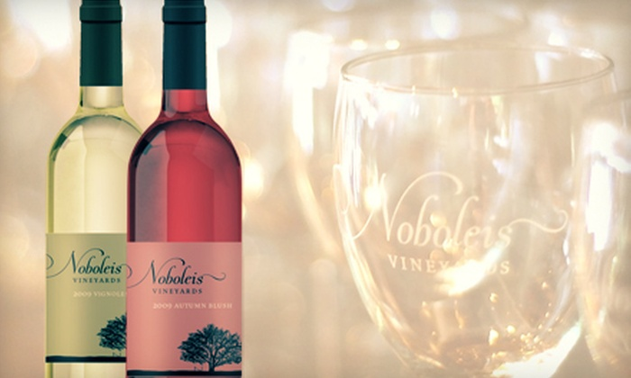 Noboleis Vineyards - Boone: Tasting-Room Pizzas, Salads, and Wines at Noboleis Vineyards (Half Off). Two Options Available.