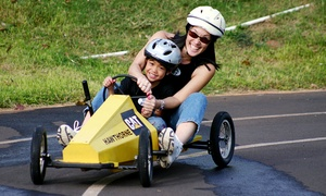 Race World Hawaii: Box Car Open-Track Time for Two, Three, Four, or Five with Helmet Rental at Race World Hawaii (Up to 52% Off)
