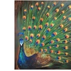 Bombay Assorted Canvas Wall Art