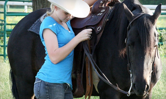 Majic Stables - Norman: One or Three Private Horseback-Riding Lessons or Four Lessons in a Group at Majic Stables in Norman (Up to 64% Off)