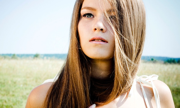 Christine Britton at Salon Schodlok - Shenandoah: Cut and Blow-Dry with Optional All-Over Color or Highlights from Christine Britton at Salon Schodlok (Up to 52% Off)