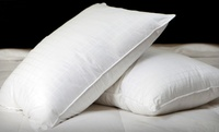 Up to 56% Off Gel-Filled Pillow 2-Packs at  2-Pack of Down-Alternative Pillows