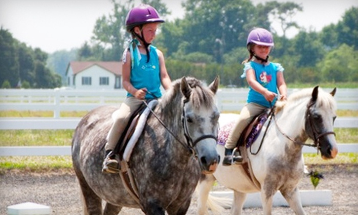 Cypress Creek Stables & Kennel - Virginia Beach: Two Private 60-Minute Riding Lessons or One-Week Summer Riding Camp at Cypress Creek Stables & Kennel (Up to 58% Off)