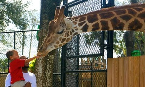Up to 31% Off at Central Florida Zoo & Botanical Gardens at Central Florida Zoo & Botanical Gardens, plus 6.0% Cash Back from Ebates.