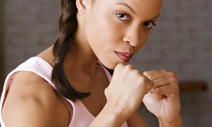 Low Summit Jiu Jitsu: One or Three Months of Women's Self-Defense, Boxing, or Jiu Jitsu Classes at Low Summit Jiu Jitsu (Up to 72% Off)