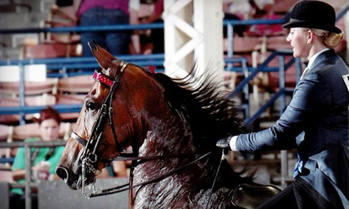 Hillcrest Stables, LLC - South Haven: Three or Five Horseback Riding Lessons at Hillcrest Stables, LLC (57% Off)