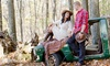 Veleska Martin Photography - Fairfield County: 60-Minute Engagement Photo Shoot with Retouched Digital Images from Veleska Martin Photography (45% Off)