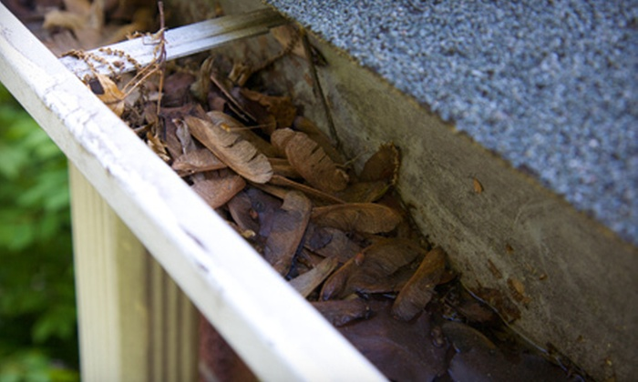Yard Sharks - Denver: Gutter Cleaning or Fall-Cleanup Services from Yard Sharks (Up to 63% Off). Four Options Available.