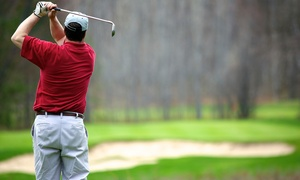 Up to 62% Off Golf for Two or Four at Pine Hills Golf Course, plus 6.0% Cash Back from Ebates.
