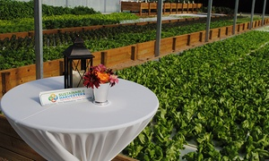 Sustainable Harvesters: Aquaponic-Farm Tour for 1, 2, 4, or 10 at Sustainable Harvesters (Up to 48% Off)