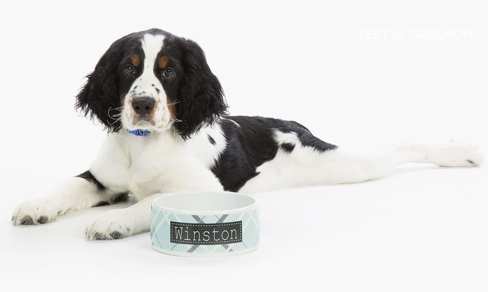 GiftsForYouNow.com: Personalized Ceramic Pet Bowl from GiftsForYouNow.com