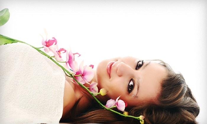 Vivid Skin Rejuvenation - Briarcliff Manor: Spa Day with Massage and Facial for One or Two at Vivid Skin Rejuvenation in Briarcliff Manor (Up to 60% Off)