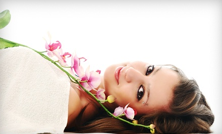 Spa Package for 1 (a $225 value) - Vivid Skin Rejuvenation in Briarcliff Manor