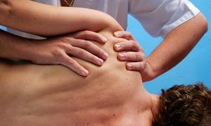 STUDIO DI OSTEOPATIA DIVANBEIGHI: Visita posturale con uno o 3 trattamenti osteopatici (sconto fino a 83%)