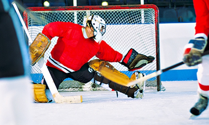 descriptive essay hockey arena The author's comments: it is a descriptive writting about my field hockey stick i slide my hands down to just the right spot grasping the soft black cushion which wraps around the top like a ribbon, i get into position.