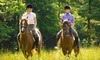 Champagne Stables - Keystone: Horseback Trail Ride for Two or Three Private Horseback-Riding Lessons for One at Champagne Stables (Up to 54% Off)
