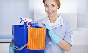 Il Regno Del Pulito: 4 ore di pulizia per appartamenti e condomini con Il Regno Del Pulito (sconto fino a 61%)