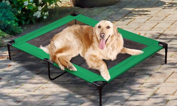 Raised Pet Bed Hammock Groupon