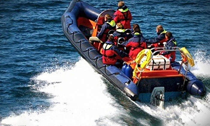 Sail Exmouth - Exmouth: Full Day's Level 1 RYA Powerboat Course for £69 with Sail Exmouth (58% Off)