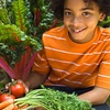 Up to 52% Off Farm to School Healthy Eating Program
