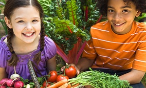 C & E Farm: On-the-Farm or On-Location Farm to School Healthy Eating Program for Kids Aged 3–12 from C & E Farm (Up to 61% Off)