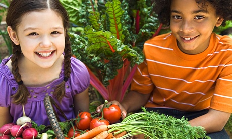 On-the-Farm or On-Location Farm to School Healthy Eating Program for Kids Aged 3-12 from C & E Farm (Up to 48% Off) 5c84836d-b7a6-407a-ba61-4661f5f9499c