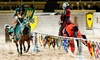 Medieval Times Dinner & Tournament — Up to 47% Off