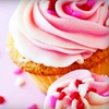 Up to 57% Off Cupcakes or Custom Cake