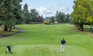 Summerfield Golf Course: Nine-Hole Round of Golf for Two or Four with Pro-Shop Snack Credit at Summerfield Golf Course (Up to 44% Off)