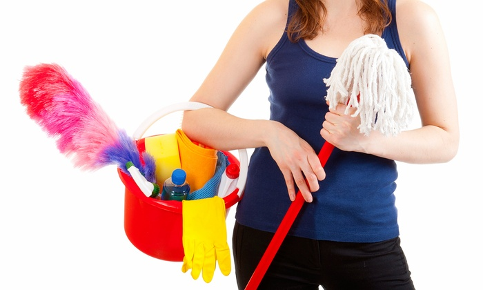 The Cleanaholics - Detroit: Housecleaning Package from The Cleanaholics (Up to 56% Off). Three Options Available.