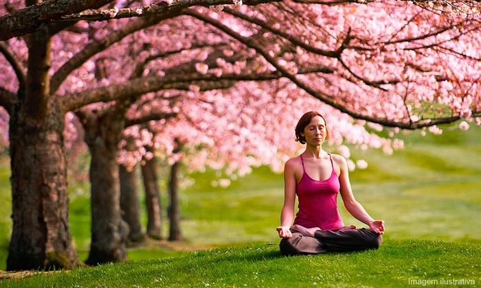 Michelle Mazur - Yoga Teacher Training - Los Angeles: $1,900 for 200-Hour Yoga-Teacher Training from Michelle Mazur - Yoga Teacher Training ($4,200 Value)