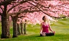 55% Off Yoga-Teacher Training