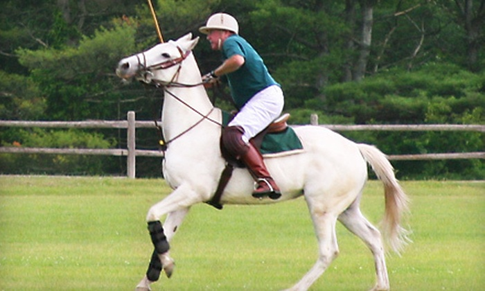 Stage Hill Polo - Stage Hill Polo: Two or Four Group Polo Lessons with Helmet at Stage Hill Polo (Up to 86% Off)