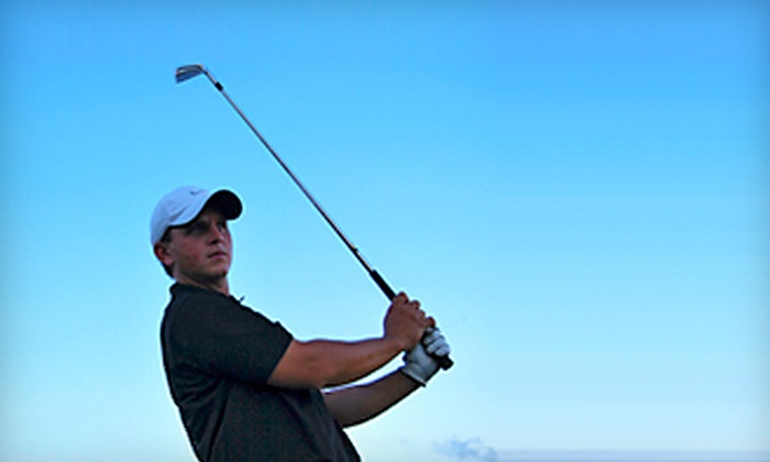 Shaun Webb Golf Academy - Trenton: Private Golf Lesson with Optional Ball-Flight Analysis at Shaun Webb Golf Academy in Sunset (Up to 68% Off)