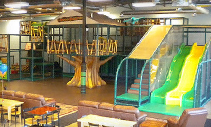 Chicago TreeHouse - Lake Zurich: $25 for Five Indoor-Play Visits at Chicago TreeHouse in Lake Zurich ($50 Value)
