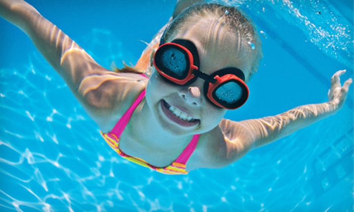 The Great American Diving Company - Saint Charles: $30 for Four Weekly 30-Minute Swim Lessons at The Great American Diving Company ($65 Value)