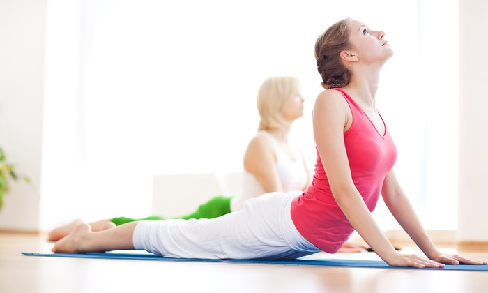 The School of Royal Yoga inc - Chester: 5 or 10 Classes at The School of Royal Yoga inc (Up to 53% Off)