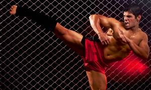 Premier Fitness: $99 for $198 Worth of Services at Premier Fitness