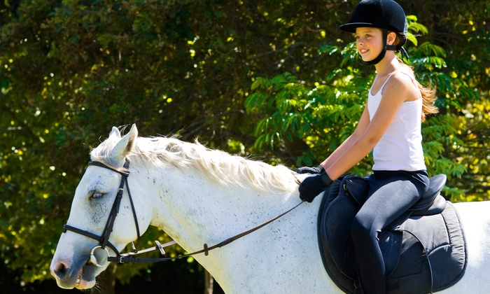 Clermark Equestrian - Myakka City: Horseback Riding Lessons for Kids 4 and Up at Clermark Equestrian (Half Off). Three Options Available.