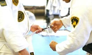 Denver Jiu Jitsu: $38 for $150 Worth of Martial-Arts Lessons — Denver Jiu-Jitsu
