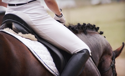 One one-hour private horseback-riding lesson