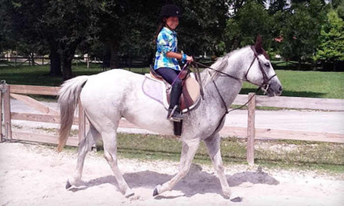 Starfall Ranch - Southwest Ranches: Horseback-Riding Party for 10 Kids or 1, 4, or 10 Half-Hour Riding Lessons at Starfall Ranch (Up to 70% Off)