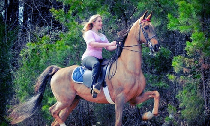 Jansal Saddlebreds LLC - Farmington: One, Three, or Five Horse-Riding Lessons, Party, or Camp at Jansal Saddlebreds LLC in Mocksville (Up to 72% Off)