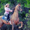 Up to 72% Off Horseback Riding in Mocksville